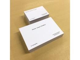 Cartes De Visite Classiques 24103001 Impression 7 Teintes Au Choix Bristol Blanc 250 Gr 3 Formats 55 X 85 Cm